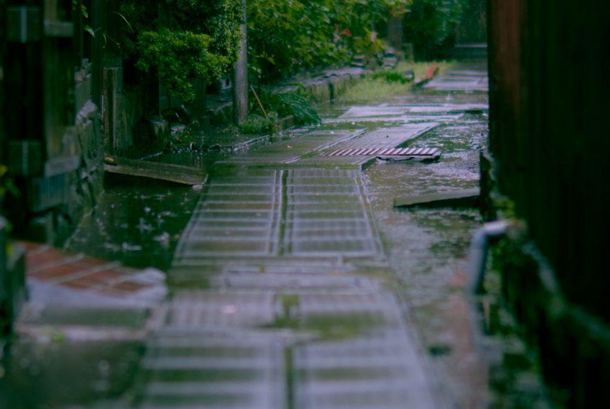 梅雨時期の過ごし方。